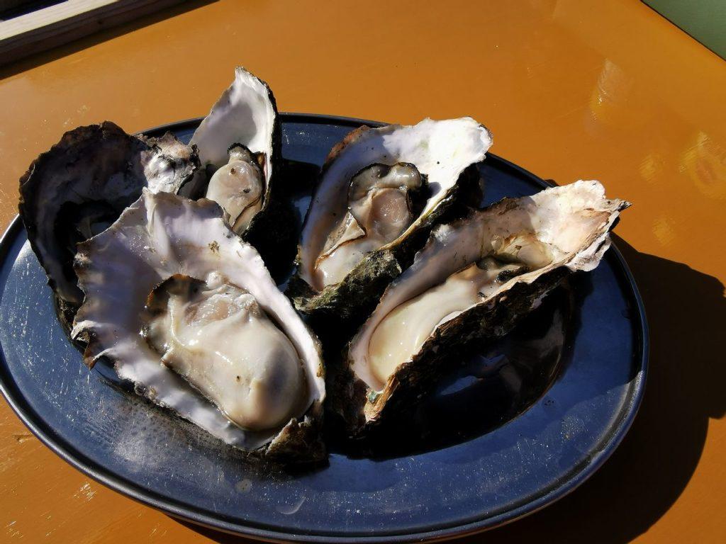 のもざき水仙まつりで食べた蒸し焼きの牡蠣