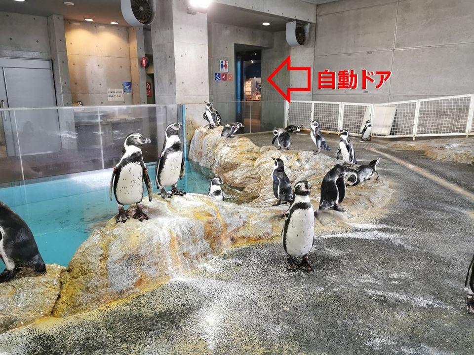 ペンギン水族館の自動ドア
