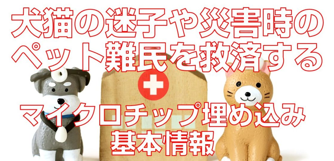 犬猫の迷子や災害時のペット難民を救済するマイクロチップ埋め込み基本情報TOP