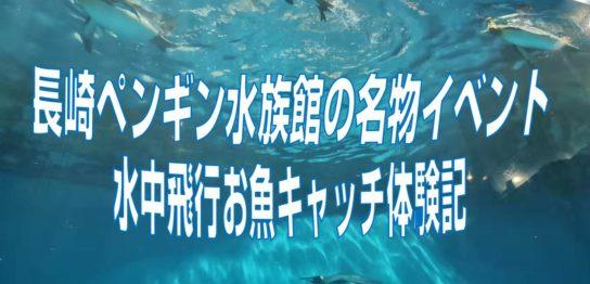 長崎ペンギン水族館の名物イベント。水中飛行お魚キャッチ体験記