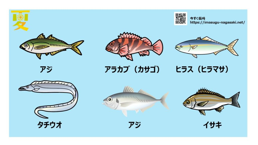 長崎の夏に旬を迎える魚の種類